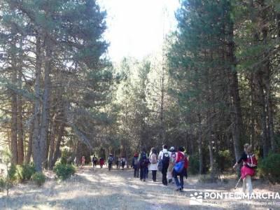 Parque Natural Cañón de Río Lobos - Cañón del Río Lobos; senderismo canarias